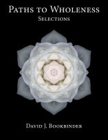Paths to Wholeness: Selections by David J. Bookbinder